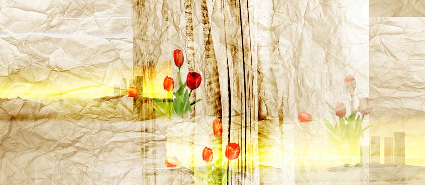 גלריית תמונות צבע חימר