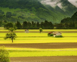 תמונות נוף כפרי