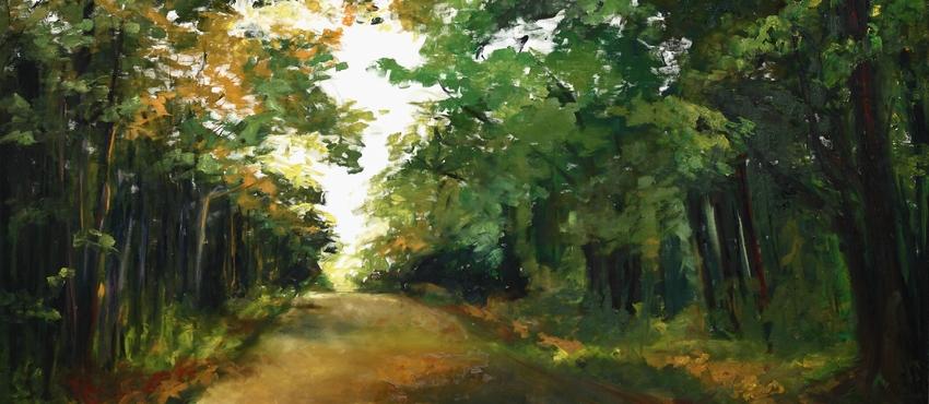 גלריית תמונות של יערות