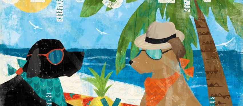 גלריית תמונות של כלבים
