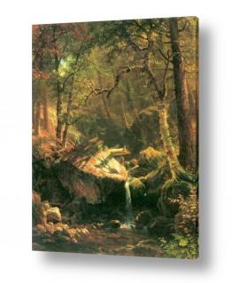 אמנים מפורסמים אלברט בירשטאדט | Albert Bierstadt 052