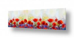 פרחים פרגים   #0012 פרחים
