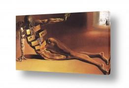אמנים מפורסמים סלבדור דאלי | Anthropomorphic Cabinet