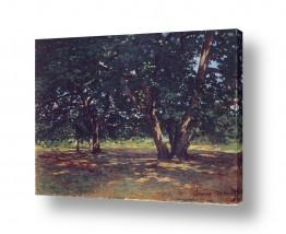 אמנים מפורסמים קלוד מונה | Claude Monet 106