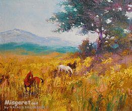 סוסים בשדה