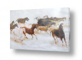 ציורים נופים וטבע | סוסים