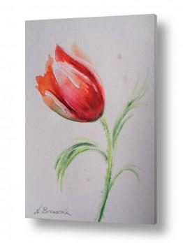 ציורים ציור בצבעי מים | צבעוני