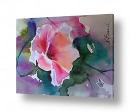 ציורים ציור בצבעי מים | אקוורל