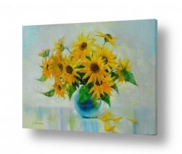 פרחים חמניה | חמניות