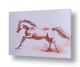 חיות חיות מחמד | סוס אש