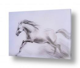 ציורים בעלי חיים | התנועה