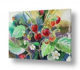 צמחים תות | פירות יער