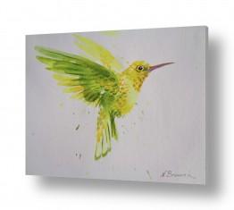 ציורים ציור בצבעי מים | כנרית