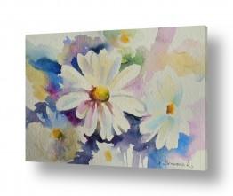 ציורים נטליה ברברניק | קמומיל לבן