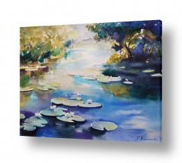 פרחים לוטוס | אגם קסמים