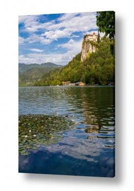 צילומים חופים וים | Slovenia