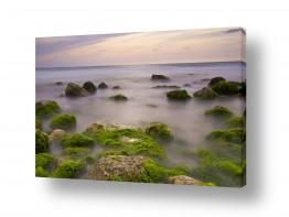 צילומים חופים וים | חוף