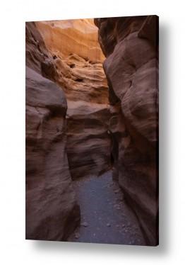 צילומים ארץ ישראלי | Red Canyon