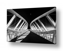 צילומים ניקולאי טטרצ'וק | גשר
