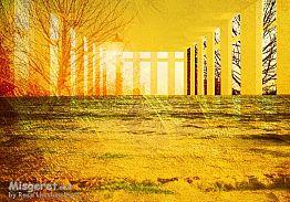 ים צהוב