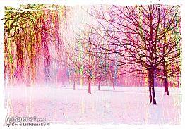 עצים בסגול