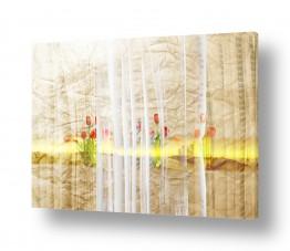 ציורים קולאג'ים | אופק על נייר
