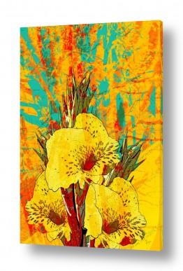 ציורים רוזה לשצ'ינסקי | פרח צהוב
