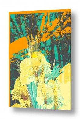 ציורים רוזה לשצ'ינסקי | פרח צהוב 2