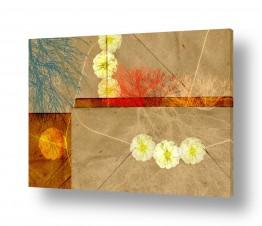 תמונות לפי נושאים נייר | מעטפה ופרח