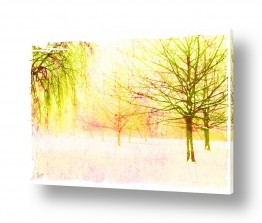 ציורים אמנות דיגיטלית | יער צהוב