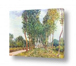 אמנים מפורסמים אלפרד סיסלי | Alfred Sisley 002
