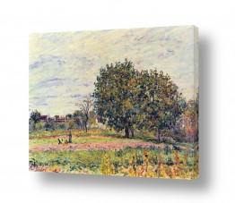 אמנים מפורסמים אלפרד סיסלי | Alfred Sisley 034