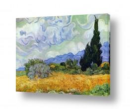 אמנים מפורסמים וינסנט ואן גוך | שדה חיטה עם ברושים
