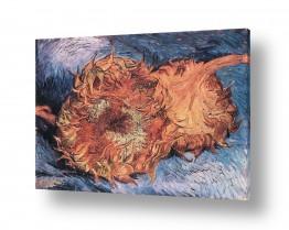 אמנים מפורסמים וינסנט ואן גוך   Two Cut Sunflowers