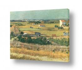 אמנים מפורסמים וינסנט ואן גוך    harvest at la crau