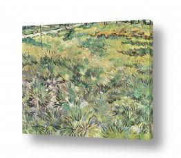 אמנים מפורסמים וינסנט ואן גוך   grass with butterflies