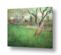 אמנים מפורסמים וינסנט ואן גוך | orchard in blossom