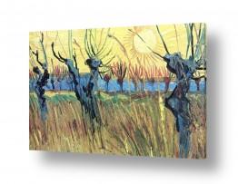 אמנים מפורסמים וינסנט ואן גוך | Willows at sunset