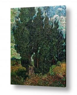 אמנים מפורסמים וינסנט ואן גוך | Cypresses with two figure