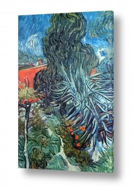 אמנים מפורסמים וינסנט ואן גוך | the doctors garden