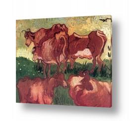 אמנים מפורסמים וינסנט ואן גוך |  cows