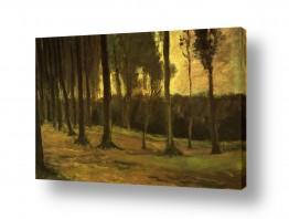אמנים מפורסמים וינסנט ואן גוך | Forest Edge