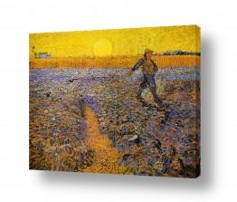 אמנים מפורסמים וינסנט ואן גוך | sower at sunset