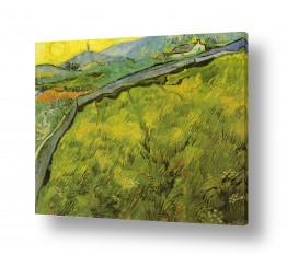 אמנים מפורסמים וינסנט ואן גוך |  green wheat fields