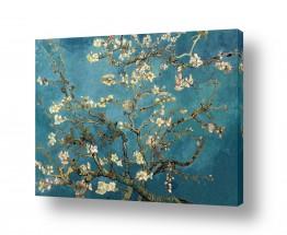 אמנים מפורסמים וינסנט ואן גוך | פריחת השקדיה