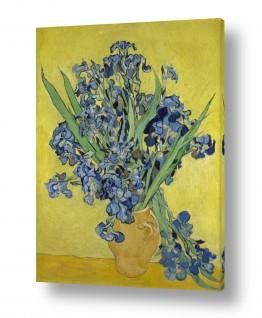 אמנים מפורסמים וינסנט ואן גוך | irises