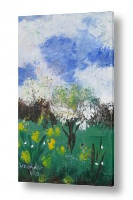 ציורים ורד אופיר | SPRING
