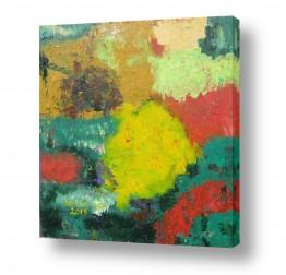 ציורים ורד אופיר | צבעים בטבע