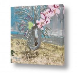 פרחים סחלב | אגרטל פרחים