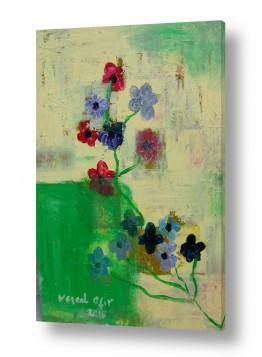 ציורים ורד אופיר | ,פרחים בהשתקפות